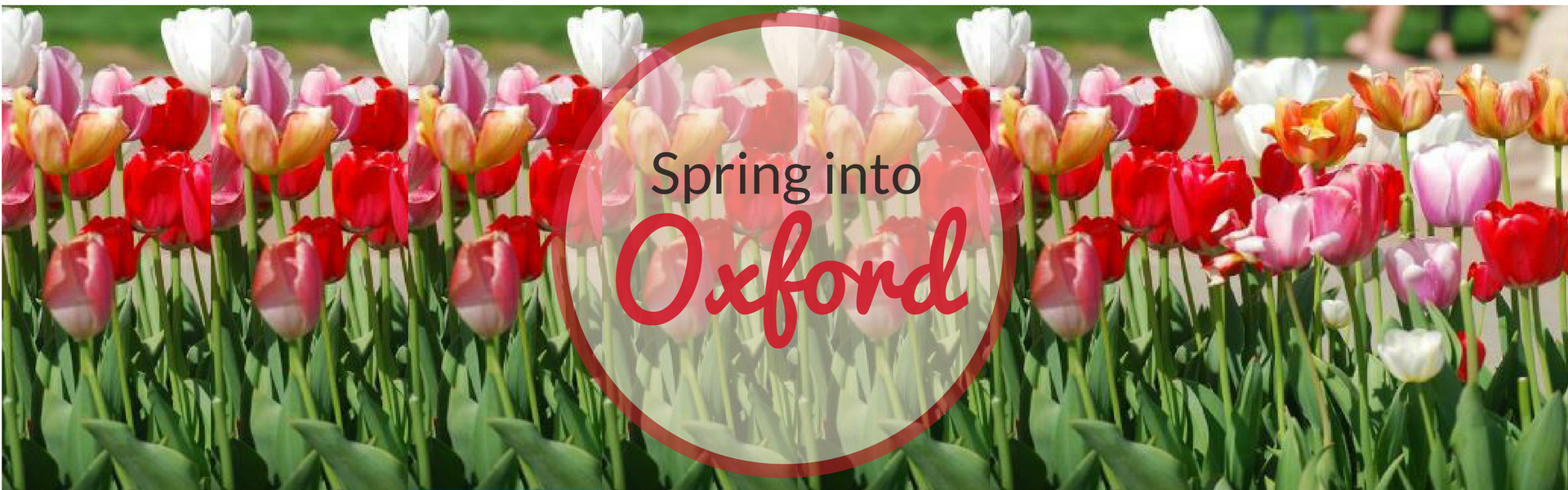 Spring into Oxford, OH